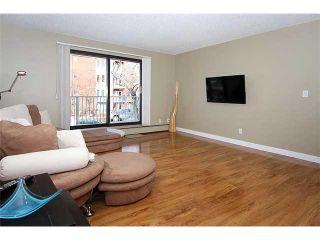 Photo 9: 101 835 19 Avenue SW in CALGARY: Lower Mount Royal Condo for sale (Calgary)  : MLS®# C3603900