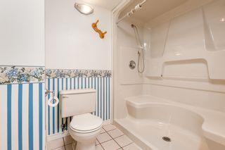 Photo 40: 12105 201 STREET in MAPLE RIDGE: Home for sale : MLS®# V1143036