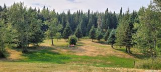 Photo 26: Forest Edge Acreage in Meadow Lake: Residential for sale (Meadow Lake Rm No.588)  : MLS®# SK865219