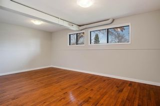 Photo 19: 2419 6 Street NW in Calgary: Mount Pleasant Semi Detached for sale : MLS®# A1101529