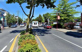 Photo 17: 106 2529 Wark St in VICTORIA: Vi Hillside Condo for sale (Victoria)  : MLS®# 766540