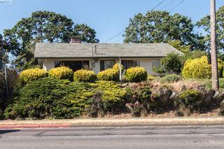 Photo 20: 918 Bay St in VICTORIA: Vi Hillside House for sale (Victoria)  : MLS®# 787949