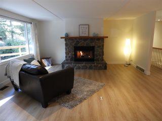 Photo 6: 2621 CEDAR Drive in Surrey: Crescent Bch Ocean Pk. House for sale (South Surrey White Rock)  : MLS®# R2549917