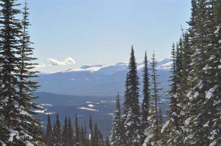 """Photo 17: 217 PRAIRIE Road in Smithers: Smithers - Rural Land for sale in """"Hudson Bay Mountain Resort"""" (Smithers And Area (Zone 54))  : MLS®# R2545464"""