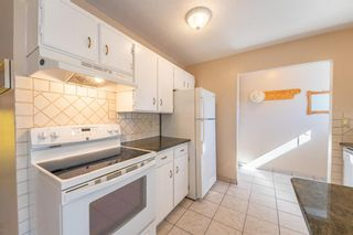 Photo 8: 5219 Whitehorn Drive NE in Calgary: Whitehorn Detached for sale : MLS®# A1149729