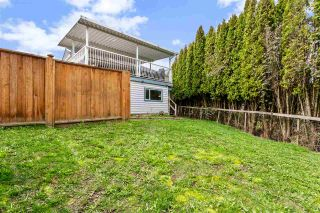 Photo 40: 3000 BABICH Street in Abbotsford: Central Abbotsford House for sale : MLS®# R2558533
