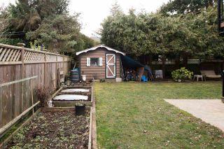 Photo 35: 5384 MAPLE Crescent in Delta: Delta Manor House for sale (Ladner)  : MLS®# R2546269