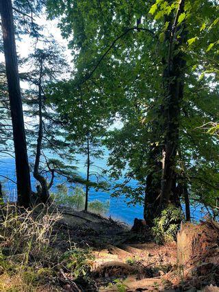 Photo 12: 455 EAST POINT Road: Saturna Island Land for sale (Islands-Van. & Gulf)  : MLS®# R2602699
