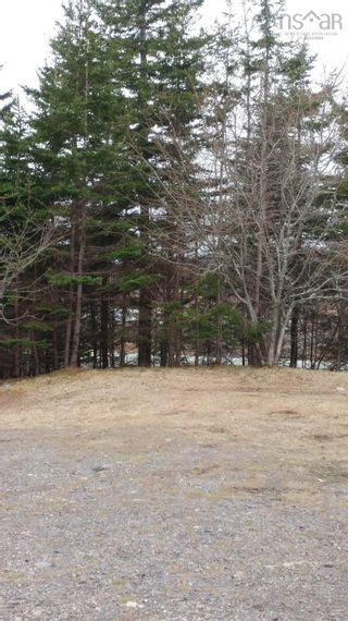 Photo 12: 6125 Gabarus Highway in French Road: 207-C. B. County Vacant Land for sale (Cape Breton)  : MLS®# 202122028