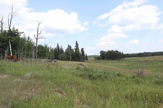 Photo 7: Twp 510 RR 33: Rural Leduc County Rural Land/Vacant Lot for sale : MLS®# E4256128