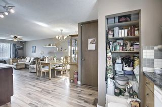 Photo 12: 367 Maitland Crescent NE in Calgary: Marlborough Park Detached for sale : MLS®# A1093291