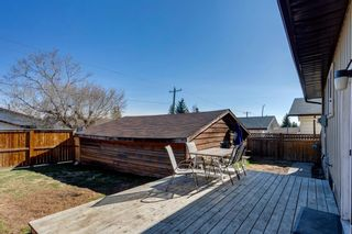 Photo 27: 11 Bedwood Place NE in Calgary: Beddington Heights Detached for sale : MLS®# A1100658