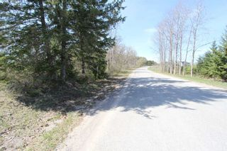 Photo 8: 259 County Rd 41 Road in Kawartha Lakes: Rural Bexley Property for sale : MLS®# X5210398