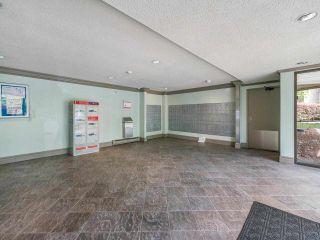 Photo 19: 336 7293 MOFFATT Road in Richmond: Brighouse South Condo for sale : MLS®# R2582157