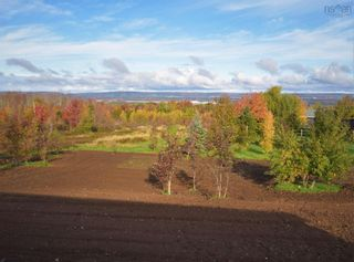 Photo 2: 1780 Meadowvale Road in Harmony: 404-Kings County Residential for sale (Annapolis Valley)  : MLS®# 202125343
