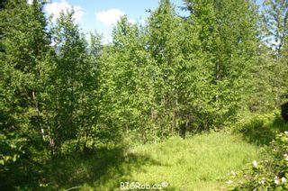 Photo 27: 4827 Goodwin Road in Eagle Bay: Vacant Land for sale : MLS®# 10116745