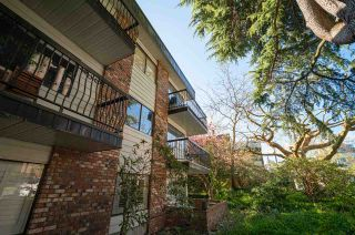 "Photo 3: 202 2330 MAPLE Street in Vancouver: Kitsilano Condo for sale in ""Maple Gardens"" (Vancouver West)  : MLS®# R2575391"