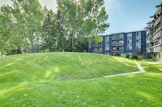 Photo 29: 327 820 89 Avenue SW in Calgary: Haysboro Apartment for sale : MLS®# A1145772