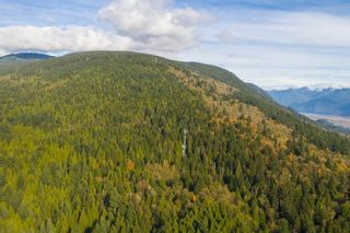 Photo 13: 3540 CONIFER Drive in Coquitlam: Burke Mountain Land for sale : MLS®# R2511383