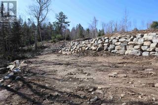 Photo 2: Lot Highway 3 in Summerville Centre: Vacant Land for sale : MLS®# 202109429