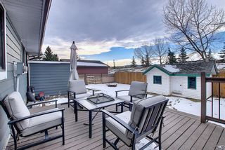 Photo 45: 15 Glenpatrick Place: Cochrane Detached for sale : MLS®# A1051475