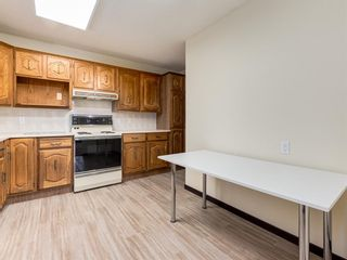 Photo 11: 141 Marquis Place SE: Airdrie Detached for sale : MLS®# A1063847