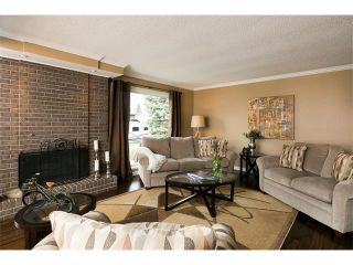 Photo 11: 236 PARKSIDE Green SE in Calgary: Parkland House for sale : MLS®# C4115190