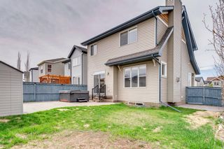 Photo 44: 1571 COPPERFIELD Boulevard SE in Calgary: Copperfield Detached for sale : MLS®# A1107569