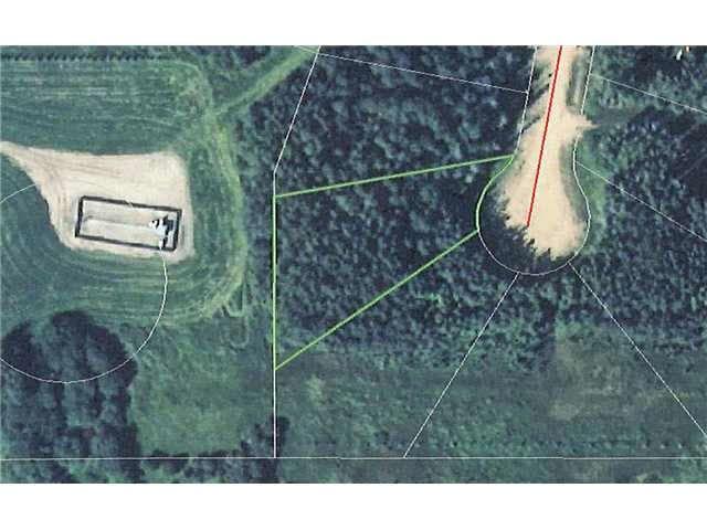 Main Photo: 25 Beachside Estates: Rural Wetaskiwin County Rural Land/Vacant Lot for sale : MLS®# E4203944