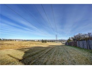 Photo 41: Strathcona Home Sold In 1 Day By Calgary Realtor Steven Hill, Sotheby's International Realty Canada