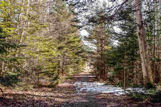Photo 5: LOT B 293 Hillside Drive in Boutiliers Point: 40-Timberlea, Prospect, St. Margaret`S Bay Vacant Land for sale (Halifax-Dartmouth)  : MLS®# 202106634