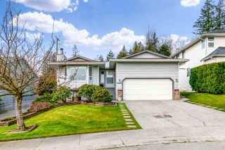 """Photo 1: 19625 65B Place in Langley: Willoughby Heights House for sale in """"Willoughby Heights"""" : MLS®# R2553471"""