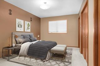 Photo 10: 66094 Lorne Hill Road in Springfield: RM of Springfield Residential for sale (R04)  : MLS®# 202107621