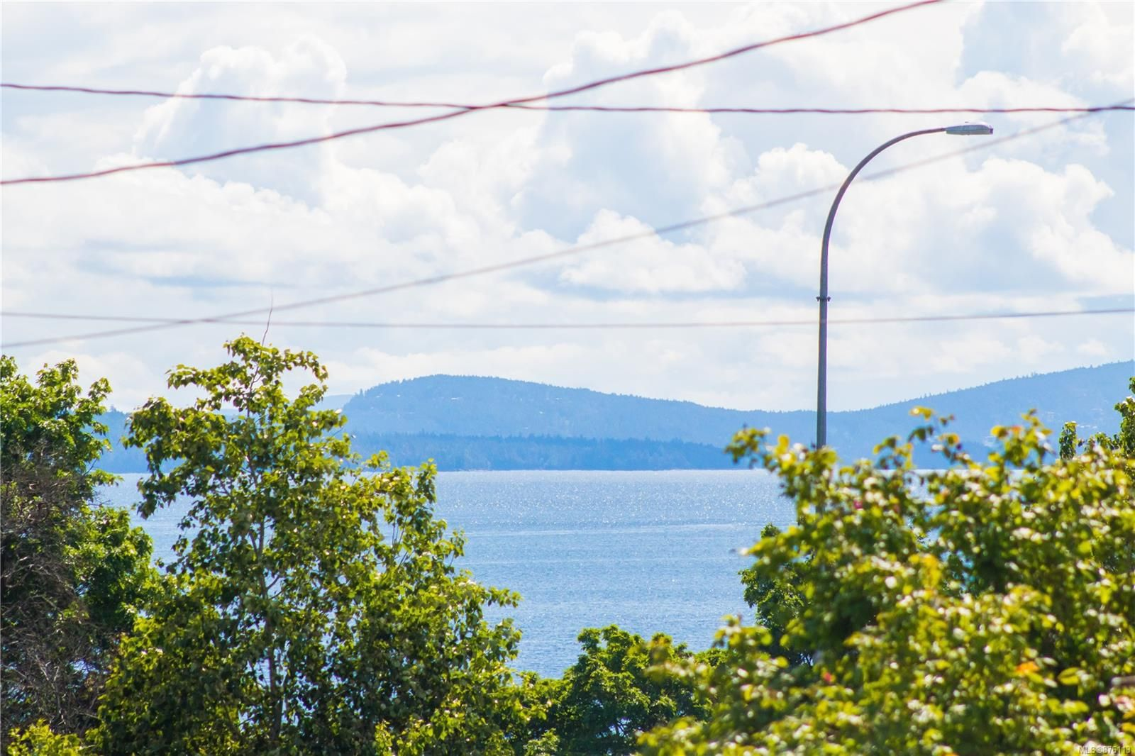 Main Photo: 110 Esplanade Ave in : Du Ladysmith Multi Family for sale (Duncan)  : MLS®# 876113