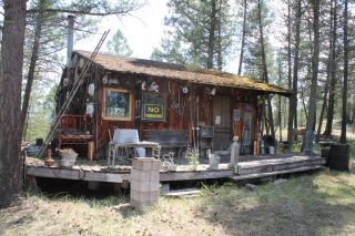 Photo 11: 1601 JOHNSTON ROAD in Invermere: House for sale : MLS®# 2459843