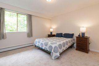 Photo 12: 503 1025 Inverness Rd in : SE Quadra Condo for sale (Saanich East)  : MLS®# 876092