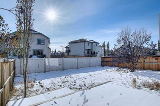 Photo 45: 23 Evanscove Heights NW in Calgary: Evanston Detached for sale : MLS®# A1063734