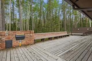 Photo 33: 336235 Leisure Lake Drive W: Rural Foothills County Detached for sale : MLS®# A1117903