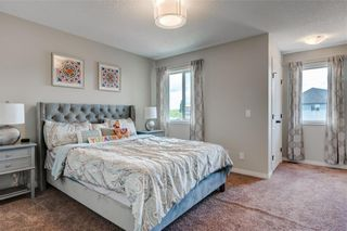 Photo 13: 96 COPPERSTONE Drive SE in Calgary: Copperfield Detached for sale : MLS®# C4303623