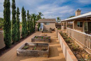 Photo 24: DEL CERRO House for sale : 3 bedrooms : 6232 Winona Ave in San Diego