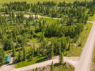 Photo 13: 20 34364 RANGE ROAD 42: Rural Mountain View County Land for sale : MLS®# A1017805
