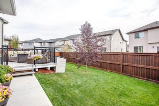 Photo 49: 187 Cranford Green SE in Calgary: Cranston Detached for sale : MLS®# A1092589