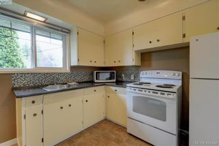Photo 5: 4051 Hodgson Pl in VICTORIA: SE Lake Hill House for sale (Saanich East)  : MLS®# 842061