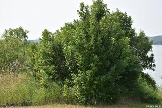 Photo 5: 16 Aaron Drive in Echo Lake: Lot/Land for sale : MLS®# SK863960