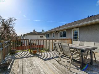 Photo 22: 4145 Birtles Ave in VICTORIA: SW Glanford House for sale (Saanich West)  : MLS®# 835004