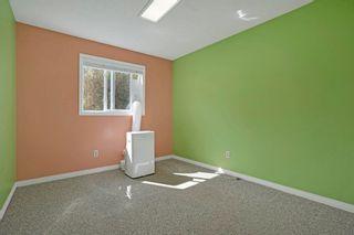 Photo 23: 51 ALPINE Boulevard: St. Albert House for sale : MLS®# E4247886