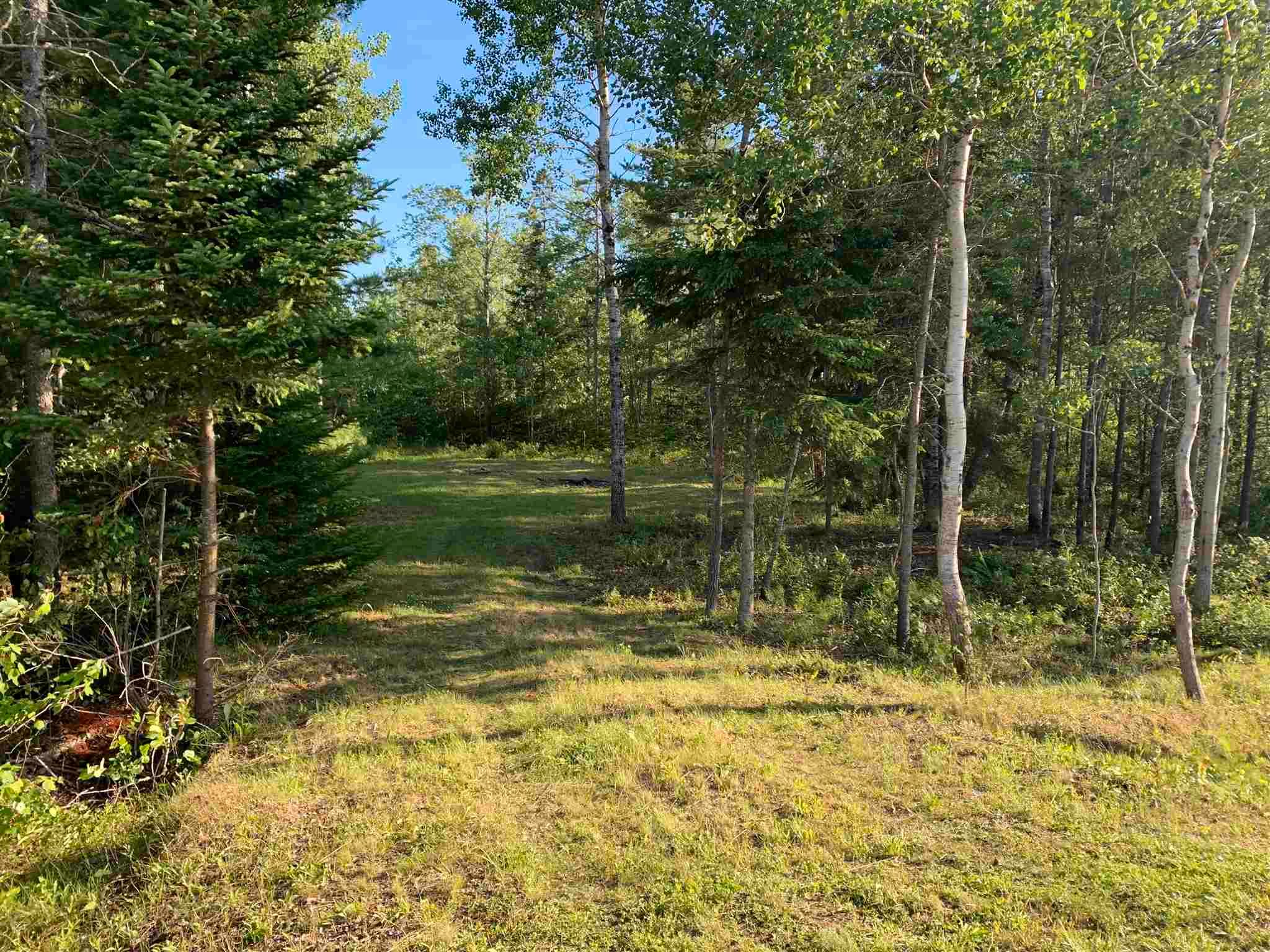 Main Photo: Lot 31 Highway 14 in Nine Mile River: 105-East Hants/Colchester West Vacant Land for sale (Halifax-Dartmouth)  : MLS®# 202118383