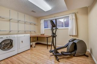 Photo 33: 3727 Underhill Place NW in Calgary: University Heights Detached for sale : MLS®# A1045664