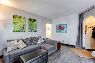 Photo 7: 11315 125 Street in Edmonton: Zone 07 House for sale : MLS®# E4265481