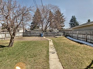 Photo 14: 916 18A Street NE in Calgary: Mayland Heights Detached for sale : MLS®# A1098455